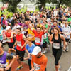 The Yorkshire Marathon