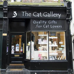 The Cat Gallery in Stonegate